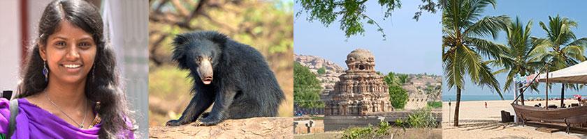 Reise nach Goa und Lippenbären beobachten in Indien
